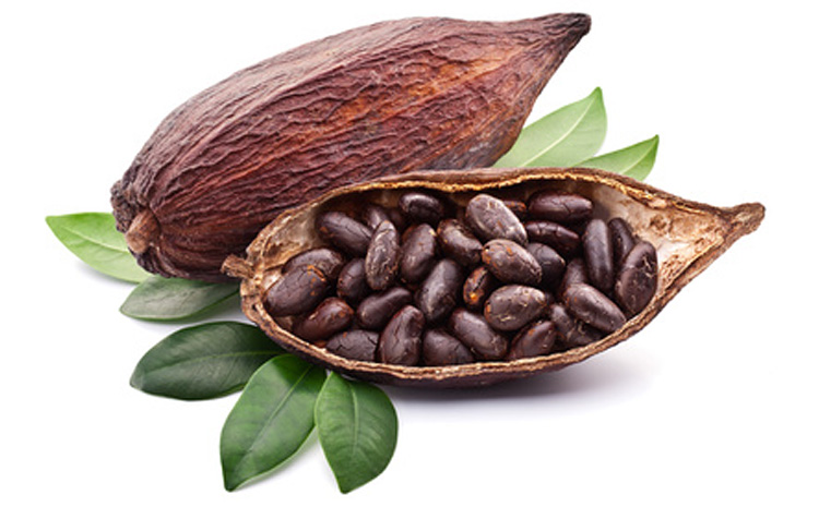 kakao-i-czekolada-jak-wplywaja-na-nasze-zdrowie