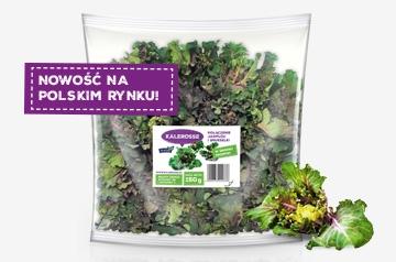 Kalerosse – nowe warzywo na polskim rynku!