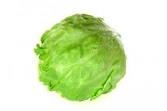 salata-lodowa